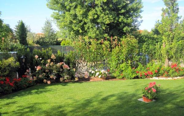 Design da giardino